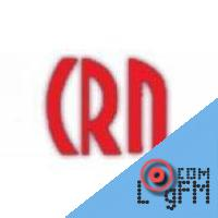 CRN Digital Talk 4