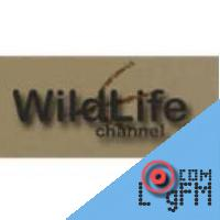 Wild Life Channel TV