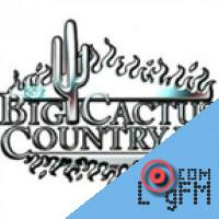 The Big Cactus Country